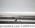 貝類收集 沙灘 海岸 21699103