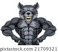 Wolf Mascot 21709321