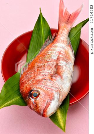 Lake Hamana, natural minced sea bream of Osaka port (red sea bream / hope). 21714382