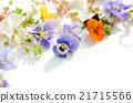 Arrangement of viola and violet 21715566