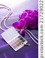 eye shadow, toilet article, cosmetics 21729022