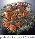 螃蟹 蟹 裝配 21732544