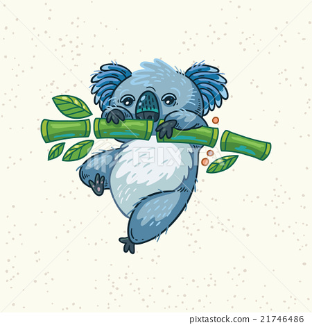Cute cartoon koala on a tree. Vector illustration 21746486