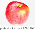 水果 水彩画 水彩 21768167