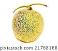 水果 水彩画 水彩 21768168