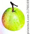 水果 水彩画 水彩 21768169