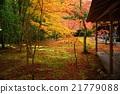 京都高须的秋叶 21779088