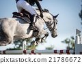 Horse Jumping, Equestrian Events 21786672