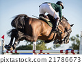 Horse Jumping, Equestrian Events 21786673