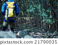 男人 鹿 野生 21790035