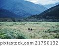 男人 在山里 走路 21790132