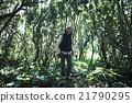 男性 自然 徒步旅行 21790295