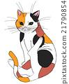 猫 猫咪 小猫 21790854