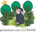 wild, wildness, animal 21794496