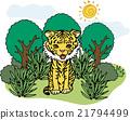 wild, wildness, tiger 21794499