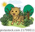 wild, wildness, animal 21799011