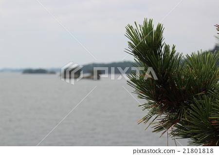 Landscape of Japan Sankei Matsushima 21801818