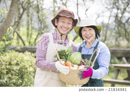 中年夫婦與籃子與蔬菜 21816981