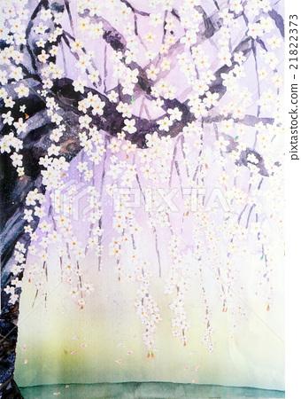 Daigo的分支櫻桃樹 21822373