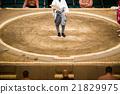 professional sumo wrestling, sumo, sumo wrestling 21829975