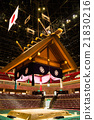 professional sumo wrestling, sumo, sumo wrestling 21830216