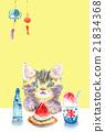 猫 猫咪 小猫 21834368