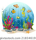 Seahorse and fish in the sea 21834619