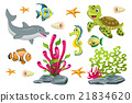 Set of cartoon marine animals 21834620