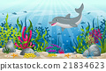 Illustration of underwater landscape with dolphin  21834623