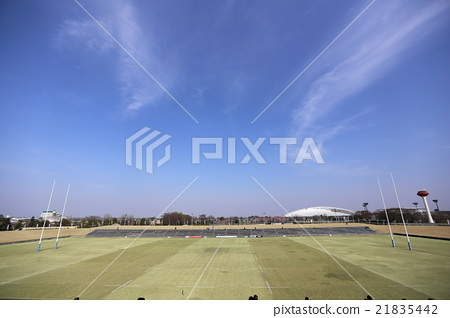 Rugby field 21835442