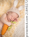 Infant boy in rabbit costume 21840272