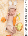 Infant boy in rabbit costume 21840274