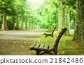 長凳和樹木 21842486