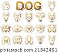 狗 狗狗 動物 21842491