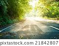 road, asphalt, asphalting 21842807
