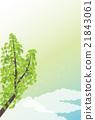 背景材料 - 夏季图像,银杏(垂直1) 21843061