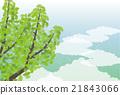 背景材料 - 夏季图像,银杏(水平1) 21843066
