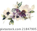 Flowers watercolor illustration 21847905
