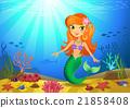 sea, mermaid, coral 21858408