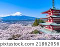 富士山 櫻花 櫻 21862056