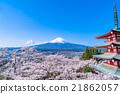 富士山 櫻花 櫻 21862057