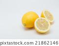 柠檬 横断面 水果 21862146