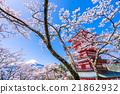 富士山 櫻花 櫻 21862932