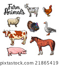 Set of farm animals on the white background 21865419