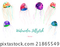 Set of hand painted watercolor jellyfish, vector. 21865549