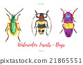 Set of hand painted watercolorbugs, vector. 21865551