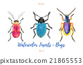 Set of hand painted watercolorbugs, vector. 21865553