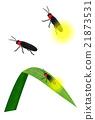 firefly, lightning, bug 21873531