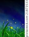 螢火蟲 日本的螢火蟲 昆蟲 21873533
