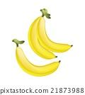 Fresh Ripe Golden Banana on White Background 21873988